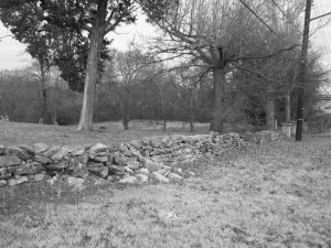 Stone Fence at Sons of Ham Cemetery