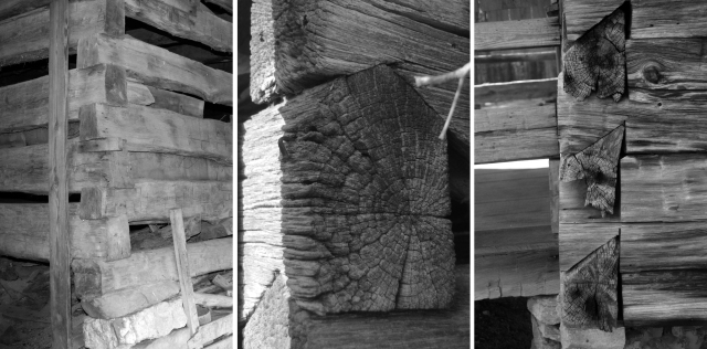 One of the most distinctive features of a log house is its corner notch, which locked the logs in place, thus ensuring the structure's stability. The most commonly seen notch types on log buildings along the Trail of Tears National Historic Trail are square (left), V (center), and half-dovetail (right).