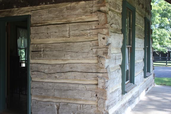 Half dovetail joints on one pen of Harding Cabin. Note the cut marks in the logs. The shape and regularity of the marks reflect the possibility that the logs were split using a wedge and mallet.