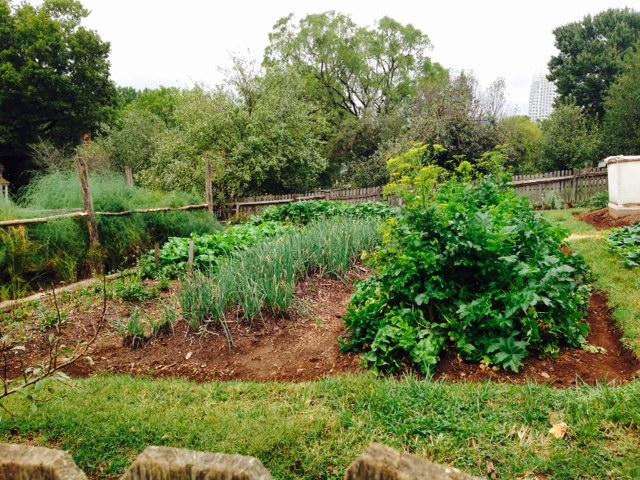 Garden at Old Salem.
