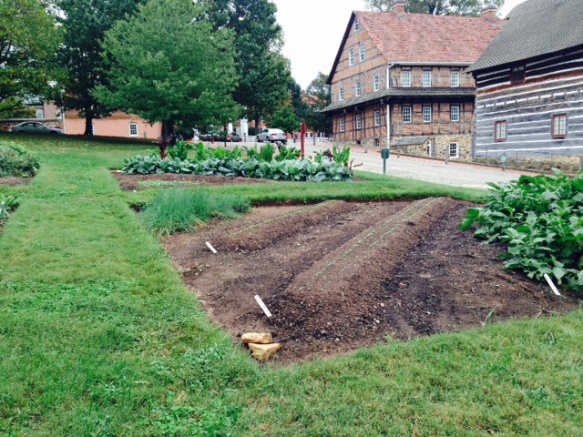 Garden at Old Salem planted using diagonal rows, following the plans of Philip Christian Reuter.