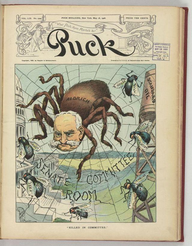5. Pughe, 1906, Spider